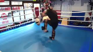 MMA Sparring🇯🇵ko-1